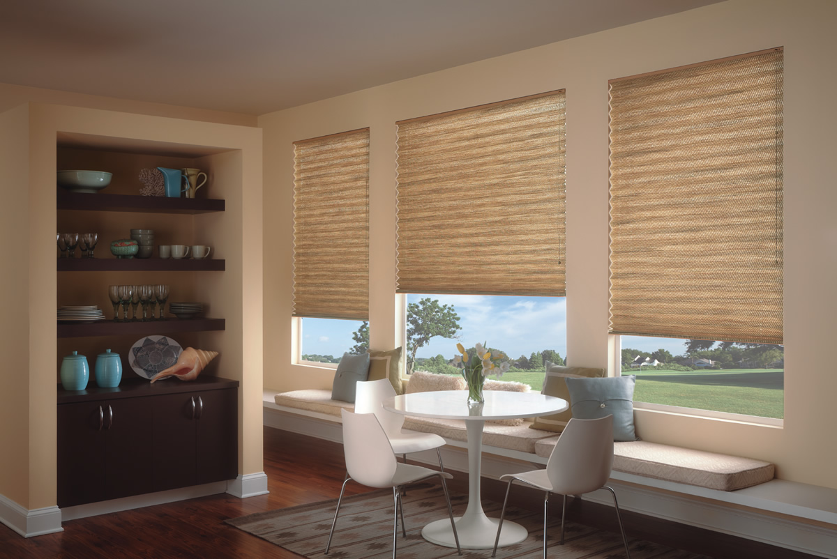 brown roman pleated shades in a glass window